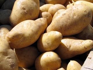 Pommes de terre du marché