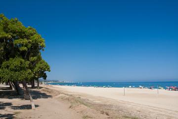 Beach under clear blue sky