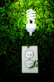 efficient light bulb and switch in green grass