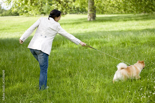 A young woman being pulled along by her dog