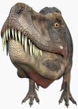 t-rex dinosaurs big head