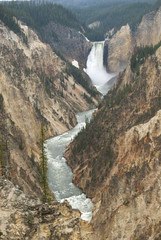 Yellowstone Lower Canyon Falls