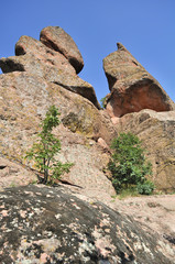 the rocks of Belogradchik