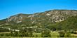 Colline de Provence en France
