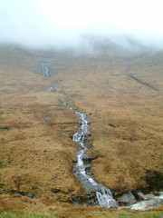 Misty Mountain Stream