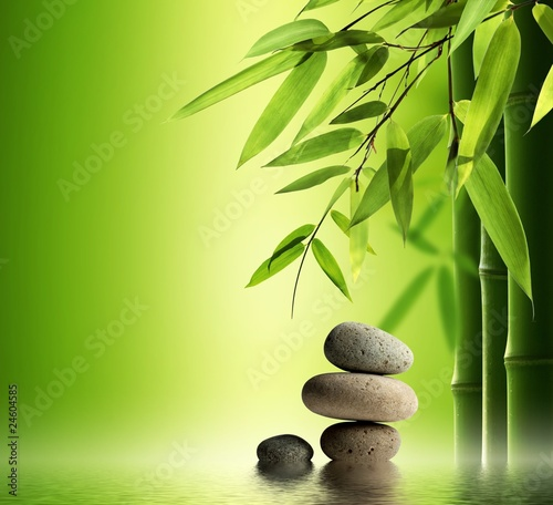Fototapeten,kurort,bambus,buddhismus,sauber