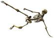 skeleton football