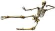 skeleton karate kick