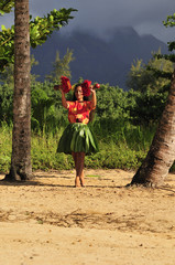 Hawaiiam hula dancer
