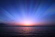 夜明け - 24606735