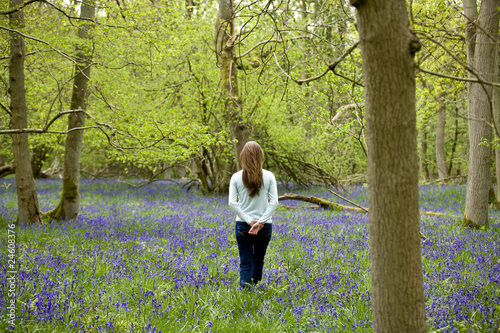 A young woman standing in a bluebell wood, back view