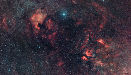 Cygnus Constellation nebularity in Milky Way