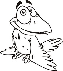 Crow.Funny Birds.