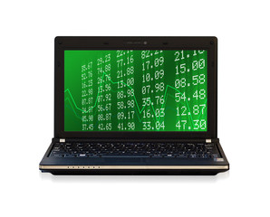 financial laptop