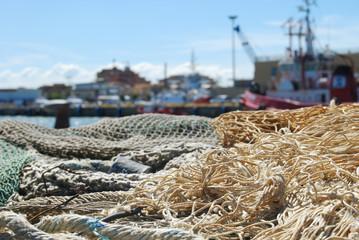 Reti da pesca nel Porto di Fiumicino