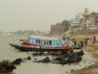 Varanasi - Buffalo bath 1