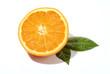 orangenhälfte freigestellt