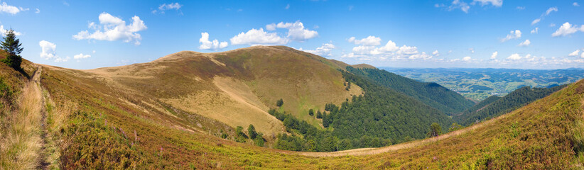 summer mountain panorama (Ukraine, Carpathian Mountains)