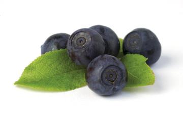 wild blueberries on white