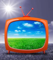 TV su prato verde