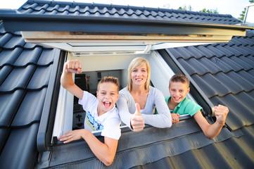 Dachfenster 260710