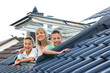 Dachfenster 240810