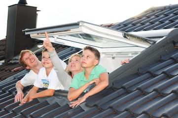 Dachfensterfamilie 200810