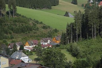 germania foresta nera