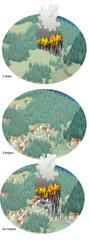 Incendies de forêts - De l'aléa au risque