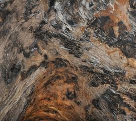 Ceiling in Postojna Cave