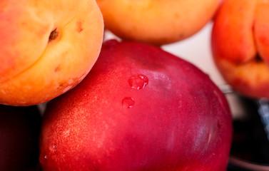 abricots et nectarine