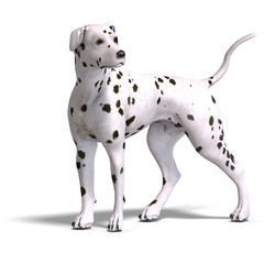 Dalmation Dog. 3D rendering with clipping path and shadow over w