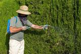 Gardener spraying pesticide poster