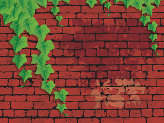 Red brick wall with ivies, AI10, CMYK.