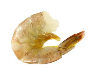 Single raw shrimp