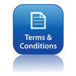 TERMS & CONDITIONS Web Button (website business company online)
