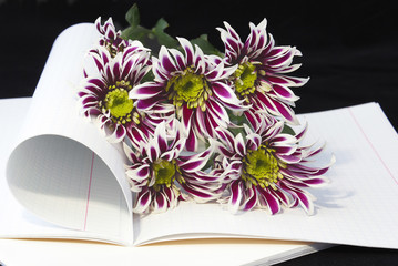 Opened notebook and flowers.