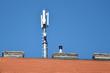 Leinwanddruck Bild - mobilfunkantenne am dach