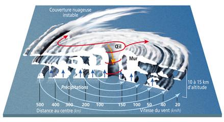 BlancCyclones, ouragans et typhons - Structure [légendée]