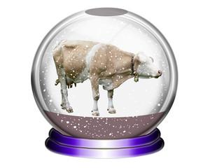 Schneekugel mit Kuh
