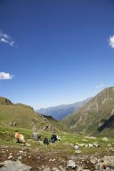 Rast in der Fallungscharte auf 2600 m - Südtirol, Italien
