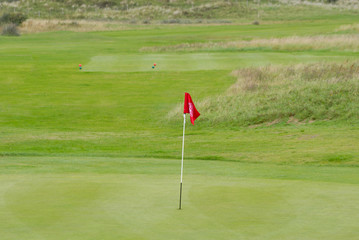Green and golf pin