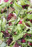 Mesclun salad mix with tongs poster