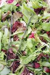 Mesclun salad mix with tongs