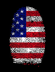 USA Fingerprint / vector