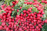 Red radishes for sale