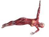 weibliche Muskulatur - ABS Workout poster
