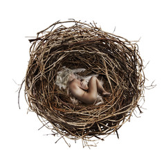 Woman inside nest