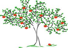 Dibujo manzano