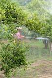 farmer spraying pesticide poster